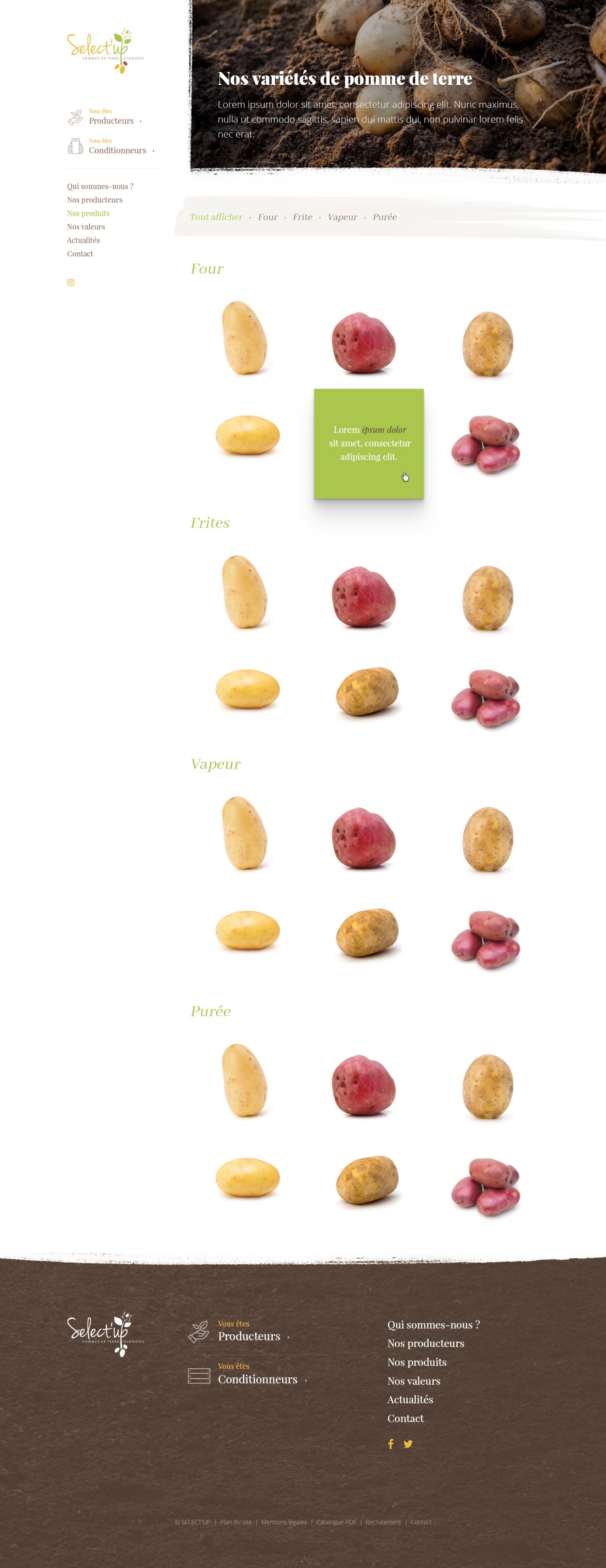ARCHIVE - Pommes de terres